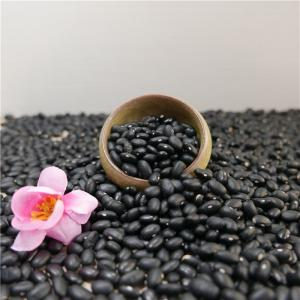 China OEM NEW Crop Food 5mm,8mm,10mm 200-600 pcs/100g All Size of Small Medium Black Kidney Beans on sale
