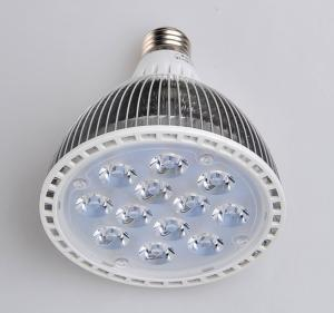 China PAR30 LED Spotlight PAR38 led bulb for European market on sale