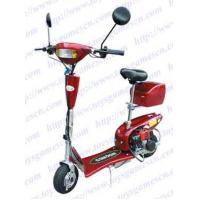 Mini Gas Scooter