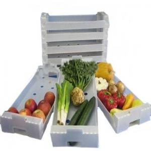 China Anti - Corrosion Collapsible Plastic Moving Boxes Correx Box For Fresh Fruit on sale