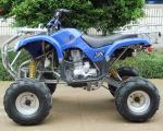Electric 8 Rim 250cc ATV Quad Bike 4 Wheel Motorbike With Manual Clutch