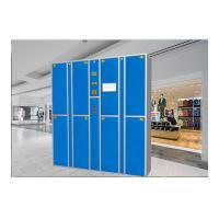 China Electronic Smart Steel Laundry Locker Metal Storage Locker with Camera on sale