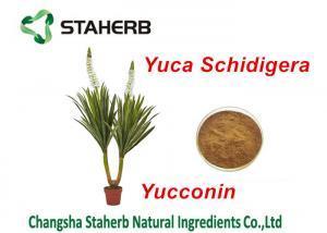 China Yucca Schidigera Extract Natural Feed Additives Yocoin Yucca Powder on sale