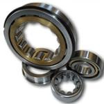 Carbon Steel Cylindrical Roller Bearing Single Row With 50mm Bore Size