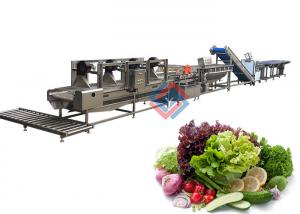 China Cold Salad Production Line Vegetable Porcessing Washing and Cutting Line on sale