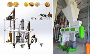 China Professional Feed Pellet Production Line Broiler Chicken Feed Making Machine on sale