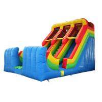 Double Lane Inflatable Slide Commerical Grade Colorful Customized Size
