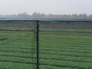 China 250 Meters 100% HDPE Insect Mesh Netting For Vegetable Greenhouse Agricultural on sale