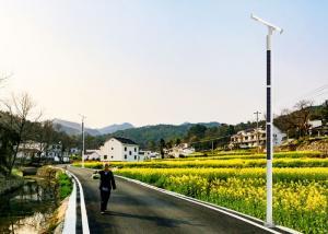 China Patent design solar light pole 5m 6m 8m 10m solar street light on sale