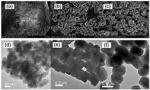 Na Y Zeolite Alkali Silicon Aluminate In Granules For Propylene Glycol Drying