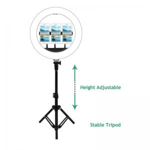 China 14inch selfie ring led light with tripod stand floor base foldable adjustable with smart phone holder on sale