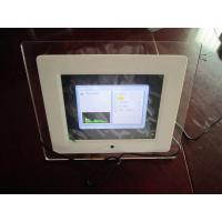 8 inch Mini TFT LCD English, French, German, Spanish, Chinese USB Digital Picture Frame