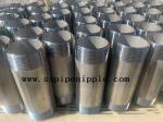 DIN2999/ DIN2982 Stainless Steel Nipple Fittings Stainless Pipe Nipples