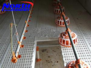 China Automatic poultry feeding system for broiler chicken house on sale