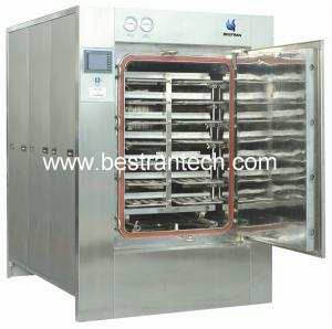 China Multifunctional Electric Steam Sterilizer , BT-DZG autoclave manufacturers on sale