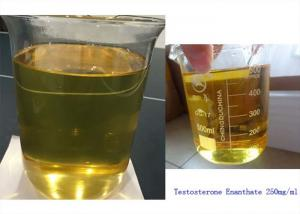 China Muscle Building Injectable Anabolic Steroids Oil Testosterone Enanthate 250mg/ml on sale