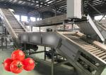 Food Grade SS304 Tomato?Crushing?Machine Tomato Paste Processing Line 12 Months Warranty