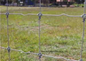 China Galvanized 5 FT Fixed Knot Woven Wire , Livestock Wire Fencing Panels on sale