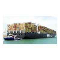 Daily Sea Freight Door To Door Service Shipping Freight To USA Baltimore