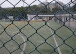 Durable Green Wire Mesh Fencing Corrosion Resistant , Diamond Shape Metal Chain Link Fence