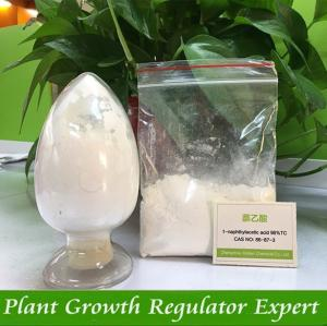 China Plant growth rooting hormones a-naphthalene acetic acid, NAA 98%TC on sale