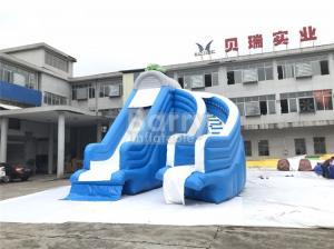 China Cool Splash Fun Inflatable Pool Slide , Realistic Shape Tortoise Water Slide For Inground Pools on sale