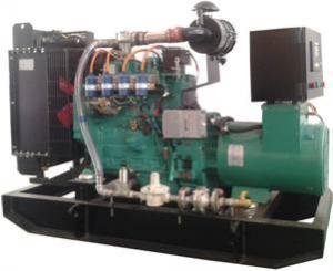 China 50kW BS Gas Genset on sale