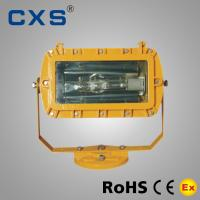 Indoor / Outdoor Explosion Proof Floodlight IP65 AC220v 250W / 400W