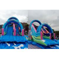 Animated Comic Character Big Kids Ground Inflatable Dry Slide With Arch Door