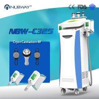 China 2 Cryo handles work simultaneously optional Cryolipolysis fat freeze body sculpting machine with 5 handles on sale