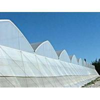 PC Greenhouse, Venlo structure
