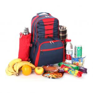 China Insulated Lunch bag Cooler backpack designed cooler 20 cans on sale