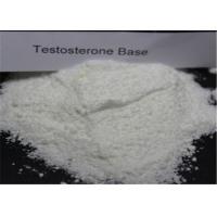 Bodybuilding Testosterone Anabolic Steroid CAS 58-22-0 Testosterone Base Powder