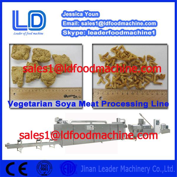 Vegetarian Soya meat processing line.jpg