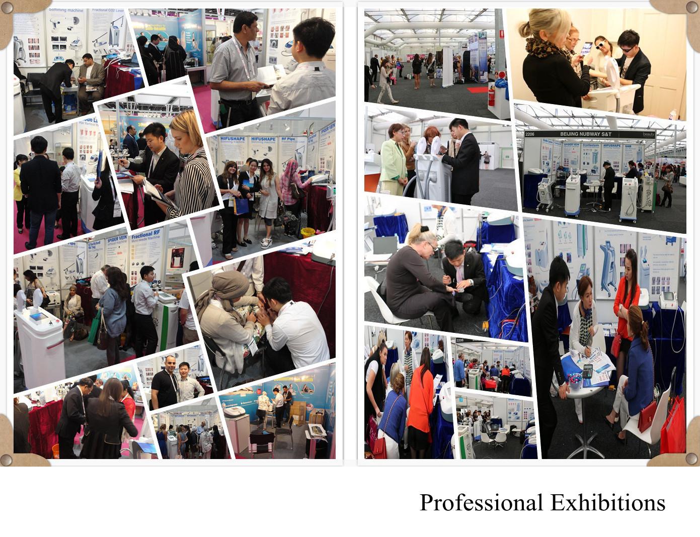 Dubai and Sydney Exhibition3_.jpg