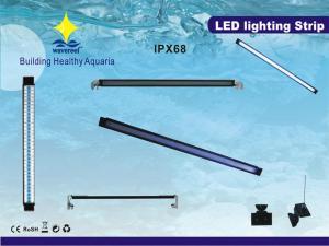 China Blue, White LED Bulb 220 - 240V 8W Customized LSP Marine Aquarium Light LED For Freshwater on sale