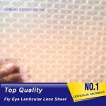 PLASTIC LENTICULAR 360 3d effect pp lenticular sheet for 3d lenticular printing dot lens microlens
