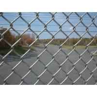 Vinyl Coated Chain Link Fence , Garden Fence Panels With 0.5--5.0m Width