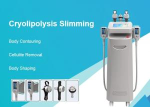 China Vertical Cryolipolysis Fat Freeze Slimming Machine For Body Shaping Two Years Gurantee on sale