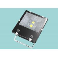 Custom Design IP65 Large Outdoor Led Flood Lights 100W For Landscape Lighting