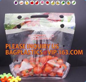 China cherry tomato bags / laminated dry fruit packaging bag, Fruit Vegetable Packaging Bag, fruit protection bag with vent ho on sale
