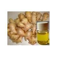 Ginger Extract, Gingerols,ginger oil, ginger oleoresin