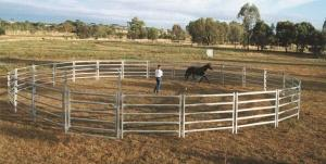 China 13Panel Cattle Corral Panels  Inc Gate, Round Yard, Cattle Fences  9m Diameter on sale