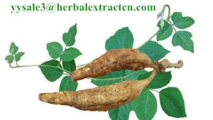 China Kudzu Root extract, Isoflavones 40%, CAS No.: 3681-99-0, Auxiliary lower blood pressure, Arctium Extract, Chinese Extrac on sale