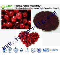 China manufacture supply bilberry extract powder --Vaccinium Macrocarpon L on sale