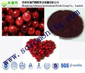 China For beverage cranberry juice powder new product Cranberry extract Cranberry fruit extract on sale