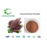 Cocoa Plant Extract Fine Brown Powder Theobroma Cacao High Purity Powder
