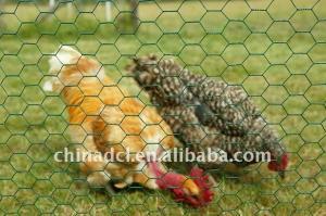 China шестиугольная сетка цыпленка плетения провода on sale