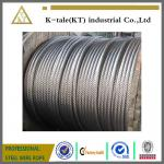 ISO9001 Supply High Strong A2 A4 SUS304 316 Stainless Steel Wire Rope  7*19 4mm