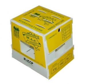 China Fresh plastic okra asparagus green bean packaging box on sale